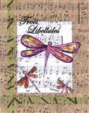 Trois Libellules