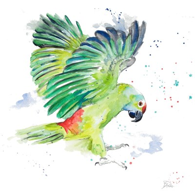Amazon Parrot I Poster by Patricia Pinto for $12.50 CAD