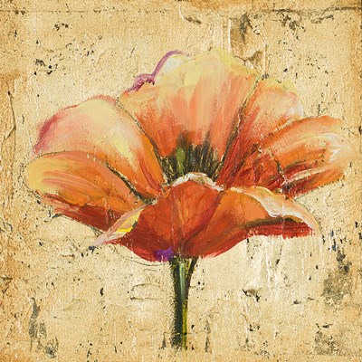 Poppy III Poster by Patricia Pinto for $12.50 CAD
