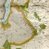 Vintage New York Map II