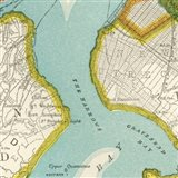 Vintage New York Map III