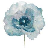 Flower in Blue II  (on white)
