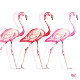 Flamingo Trio I