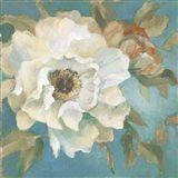 Senorita Peony in Bloom I