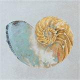 Teal Gold Seashell II
