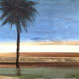 Coastal Palms III