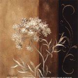 Delicate Beauty II