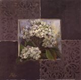 Hydrangeas on Brown I