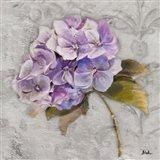 Lavender Flourish Square II