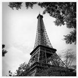 Last Day in Paris