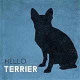 Hello Terrier