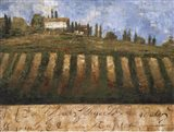 Rustic Tuscany