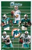 Dolphins - Team 2010