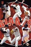 San Francisco Giants® - Team 14