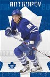 Maple Leafs - Nik Antropov 08 - your walls, your style!