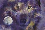Wolf - Eyes