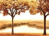 Golden Morning II