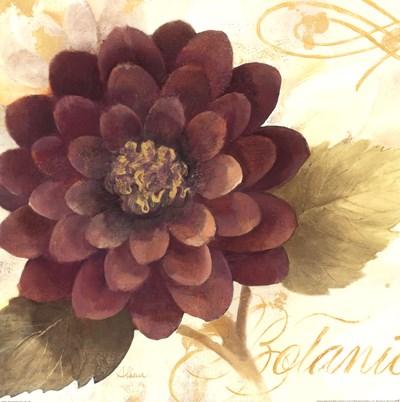 Abundant Floral II Poster by Albena Hristova for $22.50 CAD