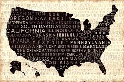 USA V Poster by Pela Studio for $36.25 CAD