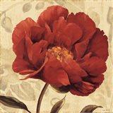 Floral Romance II C