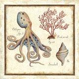 Oceanography I