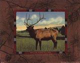 Elk I