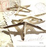 Postal Shells III