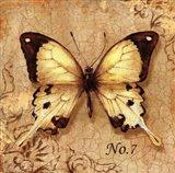 Clair's Butterfly II Art Print