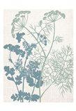 Linen Herbs 1 Art Print