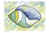 Underwater Shell 2 Art Print