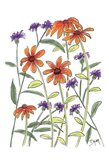 Orange Corn Flower Art Print