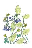 Virginia Bluebells Art Print