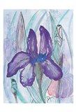 Violet Iris Art Print