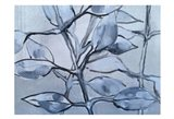 Grey Branches Art Print