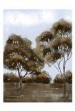 Cloudy Safari 1 Art Print