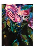 Roses7 Art Print