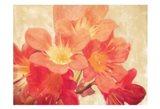 Sun Fire Florals Art Print