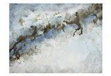 Ice Flow 1 Art Print