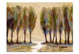 Panorama Art Print
