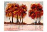 Fall Foliage 2 Art Print