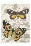 Butterfly Travel 2 Art Print