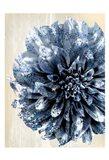 Indigo Marble Bloom 2 Art Print