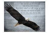 Wings as Eagles Art Print