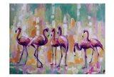Flamingo Rondevu 1 Art Print