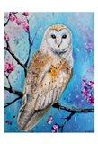 OwlWays 1 Art Print