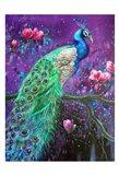 Botanical Peacock 1 Art Print