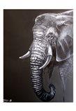 Elephant Grounds 1 Art Print