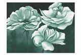 Sage Dreams 1 Art Print