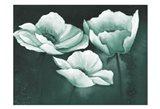 Sage Dreams 2 Art Print