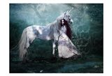 Fairy with Unicorn Art Print